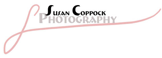 Susan Coppock Photography